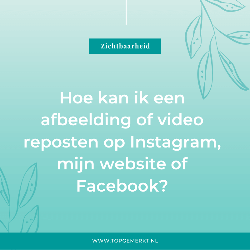 Hoe kan je een afbeelding of video reposten van Instagram, website, Facebook - omslag - TopGemerkt
