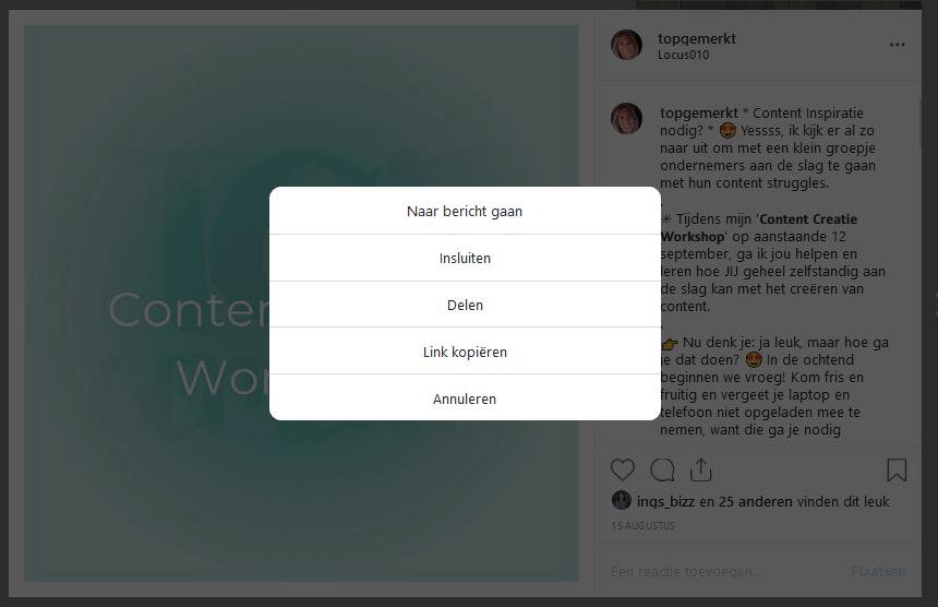 Hoe reposten op Instagram - Opties computer na 3 bolletjes - TopGemerkt